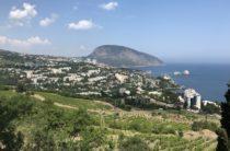 Директора Мрии и Артека рассматриваются на высокие посты в Крыму
