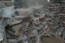 Нелегальные рыбопродукты выявлены сотрудниками ФСБ по Республике Крым