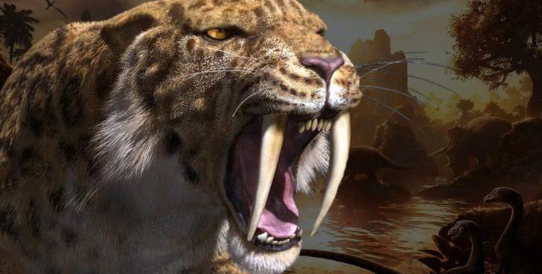 Саблезубому коту, останки которого нашли в пещере в Крыму, дали кличку Таврик.