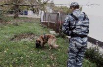 Атос, Шевкет и воровка: в Крыму служебный пес «раскрыл» кражу