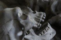 Страшная находка: в Евпатории на субботнике нашли скелет человека в мешке