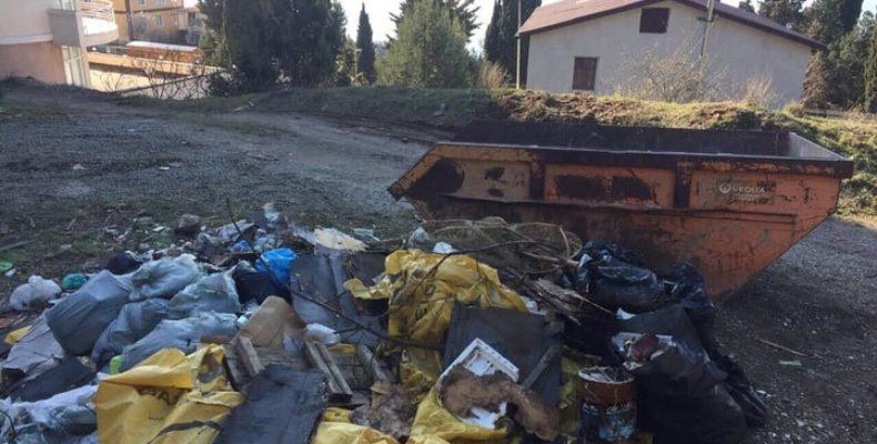 Жители ЮБК передали эстафету уборки зам.главы Ялты