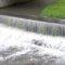Без сознания и с травмами: в Ялте спасли упавшего в реку мужчину