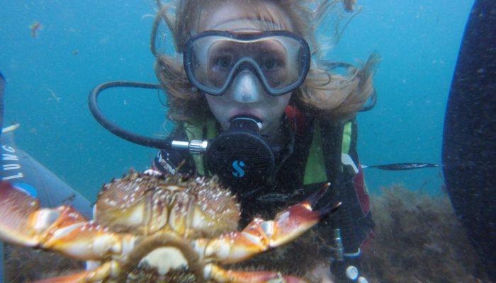 под водой краб