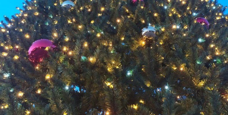 19 декабря в Ялте откроется главная новогодняя елка