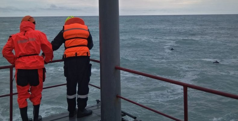 Ялта: власти будут добиваться усиления мер безопасности на берегу моря в период штормов
