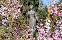 В День влюбленных вход в Никитский сад для Валентинов, Валентин и молодоженов — свободный