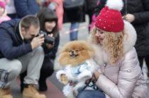 8 марта в Ялте пройдет променад-конкурс «Дама с собачкой»