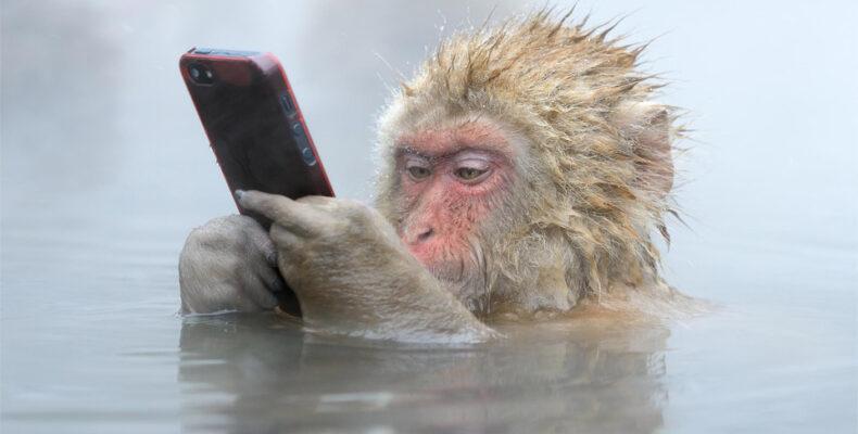 Эксперт рассказал, надо ли ставить антивирус на смартфон