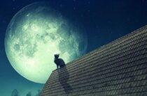 Момент силы: что делать в «парад планет» — совет астролога