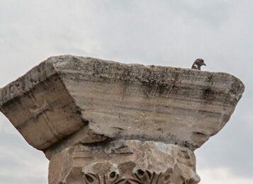 Севастопольские ученые обнаружили руины неизвестного науке античного порта